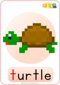 Flashcards T - Turtle